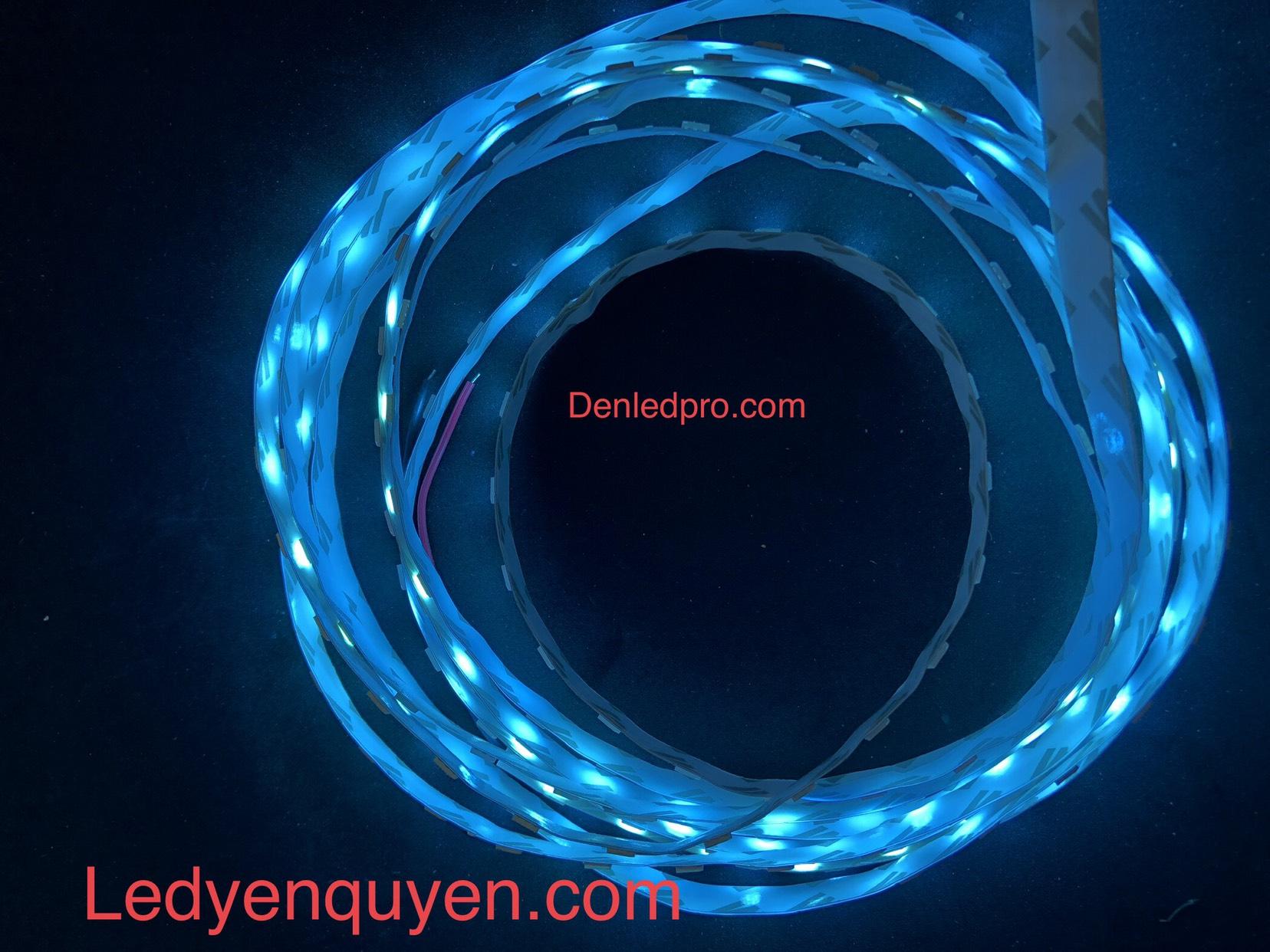 LED Dây 5050 Xanh Ngọc Taiwan 12V