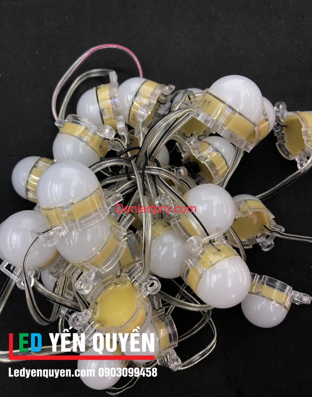 LED Bát Đơn Màu 24v (30mm) Nắp Đúc