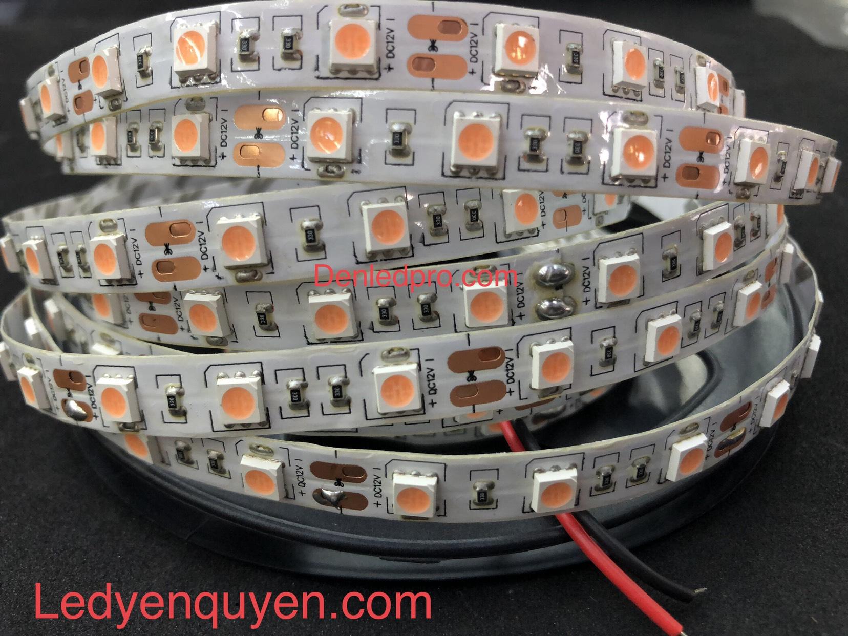 LED Dây 5050 Pink Taiwan 12V