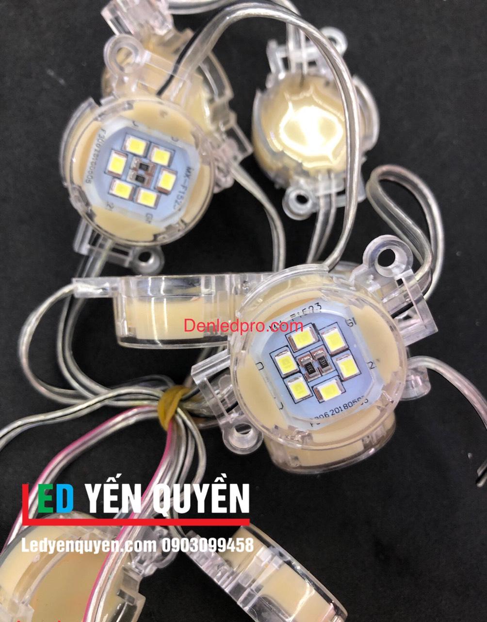 LED Bát Đơn Màu 24v (30mm)